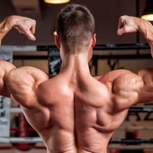 Тренировка мышц спины в тренажерном зале