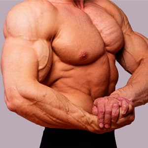Как растут мышцы после тренировки