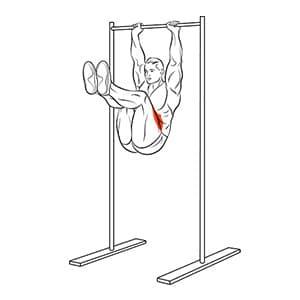 Подъем ног к груди в висе