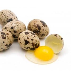 Перепелиные яйца: полезные свойства