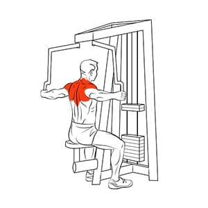 Разведение рук назад в тренажере