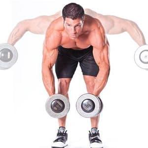 Упражнения на заднюю дельту и эффективная программа тренировок