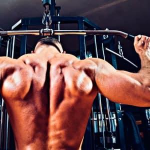 Как накачать спину: упражнения на спину в тренажерном зале и программа тренировок