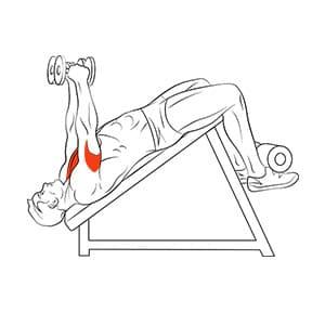 Разведение гантелей на скамье с отрицательным наклоном