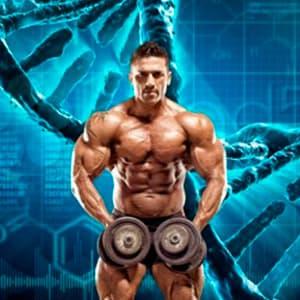 Роль генетики в бодибилдинге