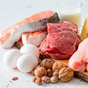 Функции белков в организме