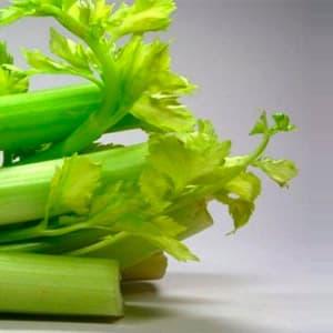 Сельдереевая (сельдерейная) диета