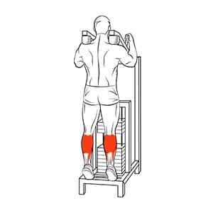 Подъем на носки в тренажере стоя